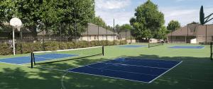 large multi court complex